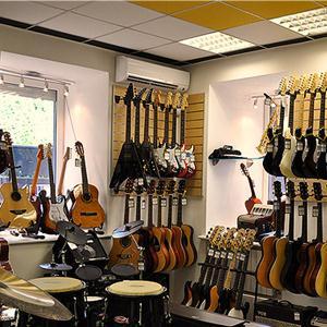 Музыкальные магазины Гусевского